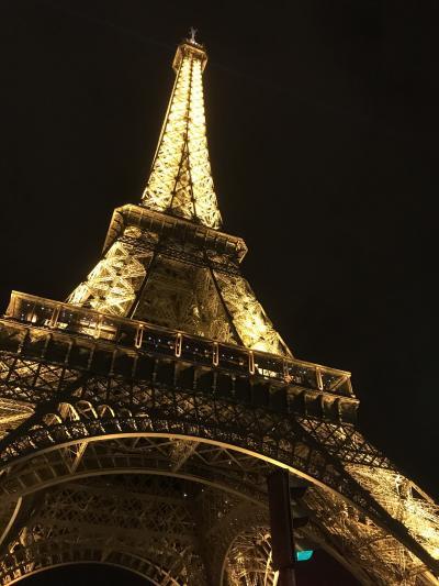 ANA特典航空券ビジネスクラスで行く、フランス女一人旅    ~ パリさんぽ  ①