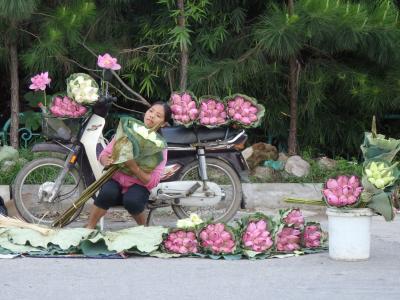 てるみショックからの復活!2度目のベトナムはハノイに決定!やまこの旅心は終わらない!その2