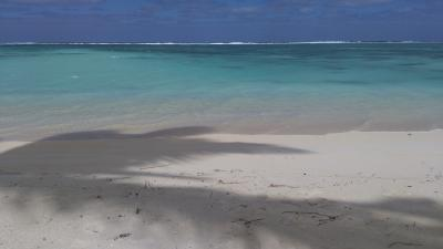 地上の楽園・ラロトンガ Day 5 アロアビーチ~チチカヴェカ~ムリ