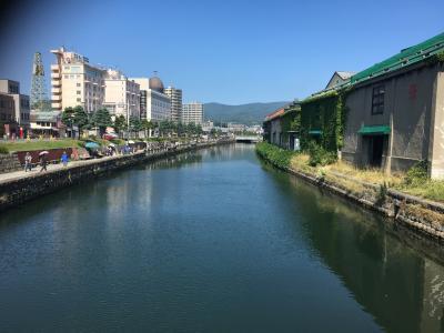 快適な夏を求めて北海道へ!家族4人と行く札幌2泊3日の旅