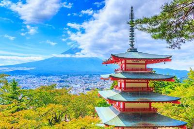 ちょっと気になったところのお散歩日記〜新倉山浅間公園・長池親水公園…
