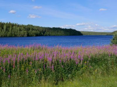 22回目のフィンランド旅行9-4〜5日目奥さんの手料理,ラヌア村の美し…