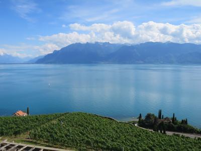 伊瑞仏周遊の旅<第5日PM>世界文化遺産「ラヴォー地区の葡萄畑」