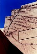 ★ちょっと昔のアメリカ合衆国 ニューヨークの壁
