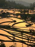 ◆元陽(Yuan Yang) 光降る棚田の郷<2012年2月再訪問 加筆修正>