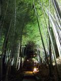 黒川温泉・・・の隣の白川温泉『竹ふえ』