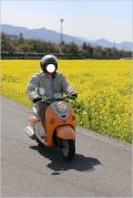 Solitary Journey [1351] *最終記*旅の終わりに畑一面に咲き誇る100万本の菜の花に遭遇しました。<四国四県・車旅>愛媛県東温市