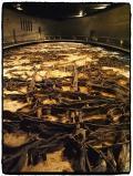 2万年前の氷河期(旧石器時代)の森と、旧石器人の遺跡 ★地底の森ミュージアム★