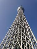 BUSINESS TRIP in TOKYO