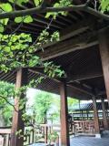 【京都アートさんぽ】若冲展2016 石峰寺『生誕三百年若冲特別展』