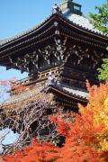 紅葉の京都を縦断漂流