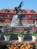 アンデルセン公園2/3 アイスチューリップ 正月に咲きそろい ☆4万株の壮観 随所に