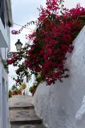 アルハンブラ宮殿のチケットを捨ててまで行きたかった フリヒリアナは さすがスペインで最も美しい村♪