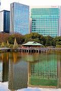 浜離宮恩賜庭園2/2 潮入りの回遊式築山泉水庭 ☆中島のお茶屋/高層ビルを背に