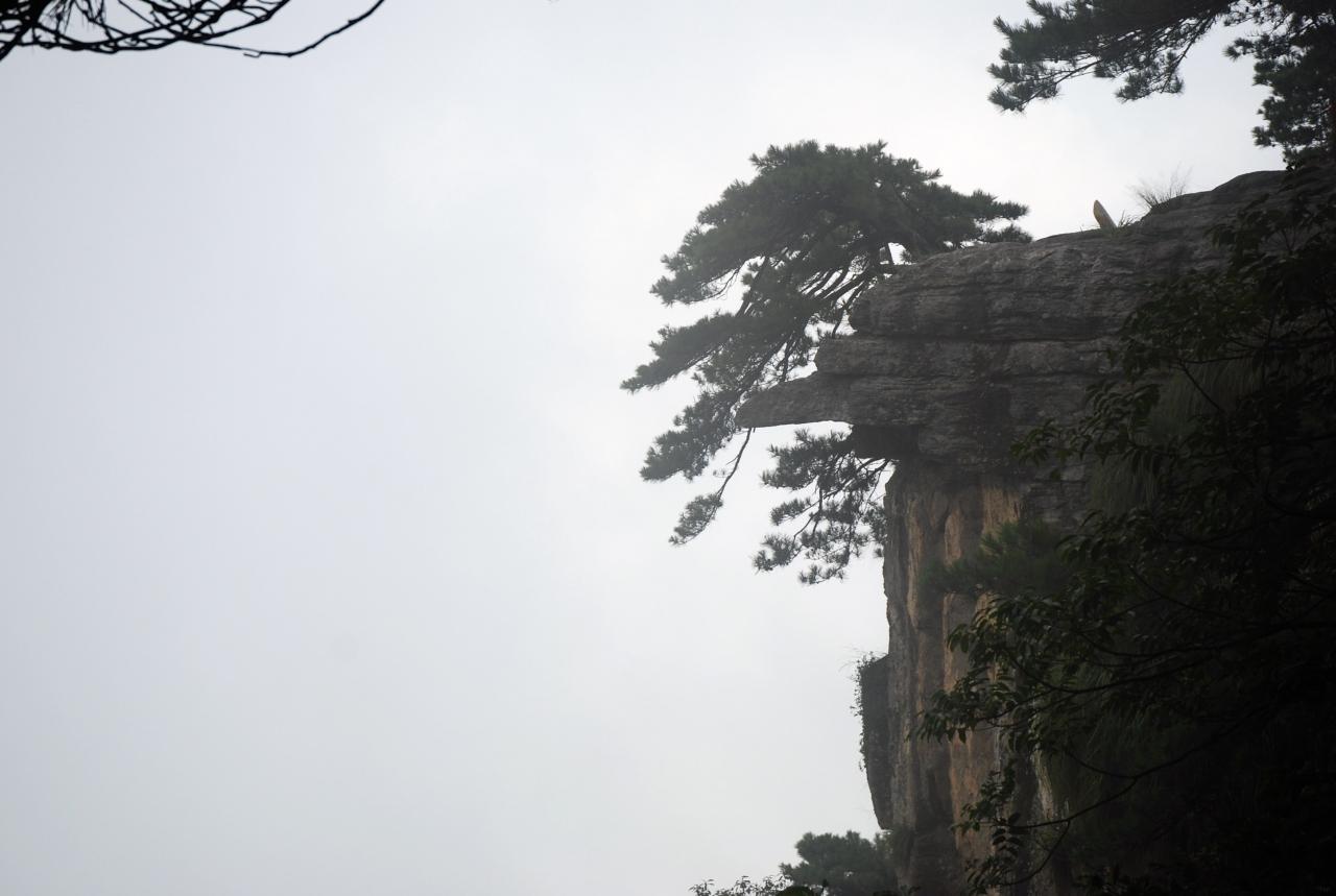廬山の画像 p1_8
