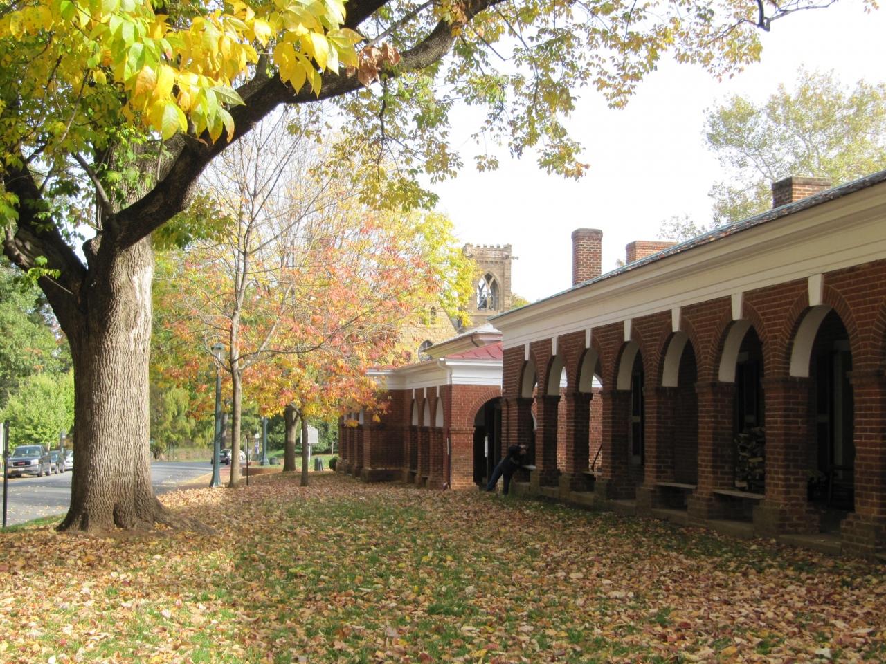 バージニア大学の画像 p1_33