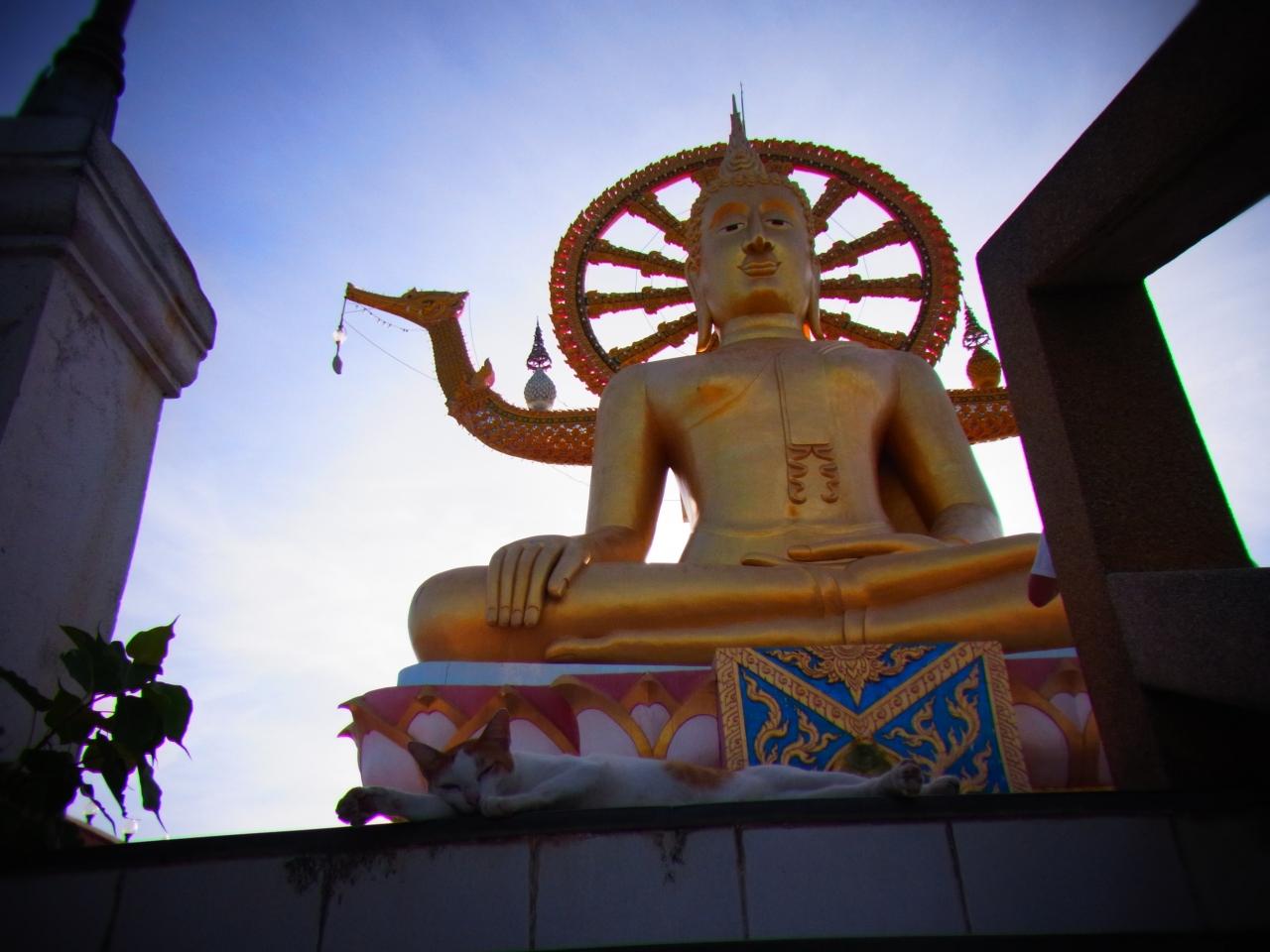 タイのリゾート、サムイ島のたび!