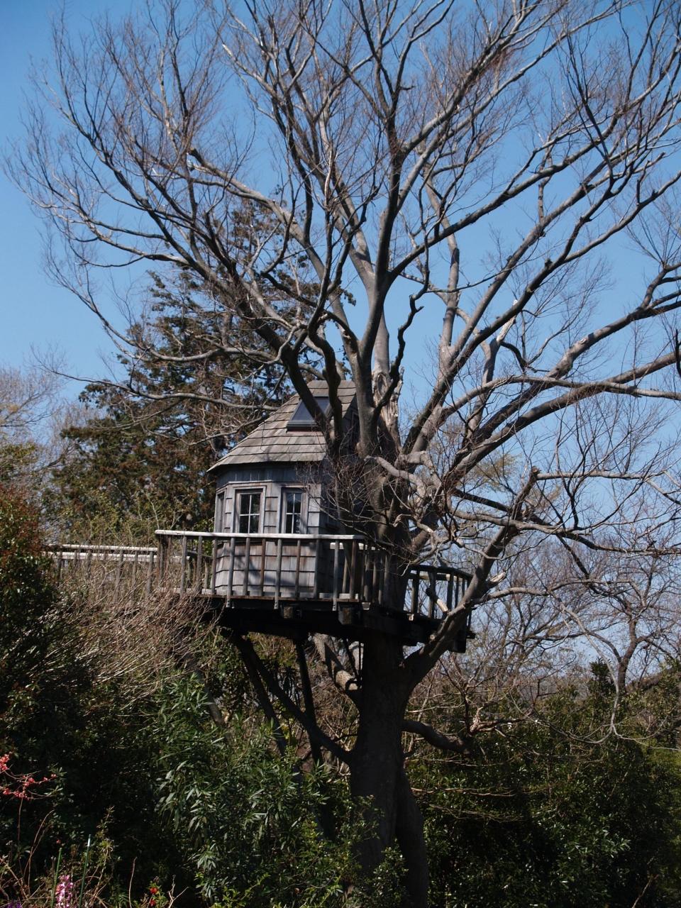 木の家設計グランプリ