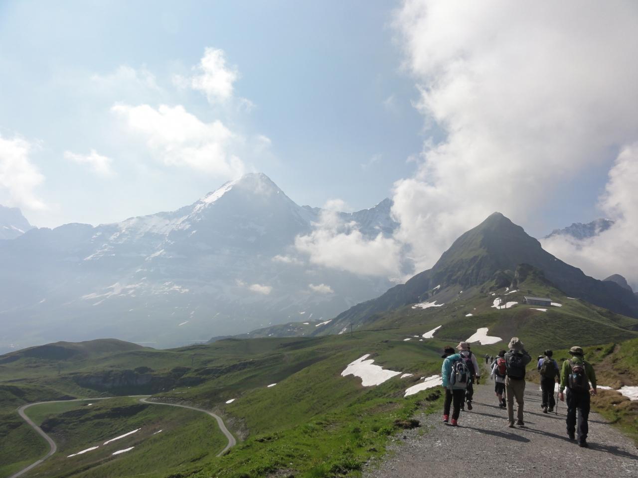 164 スイス旅行 花のユングフラウ