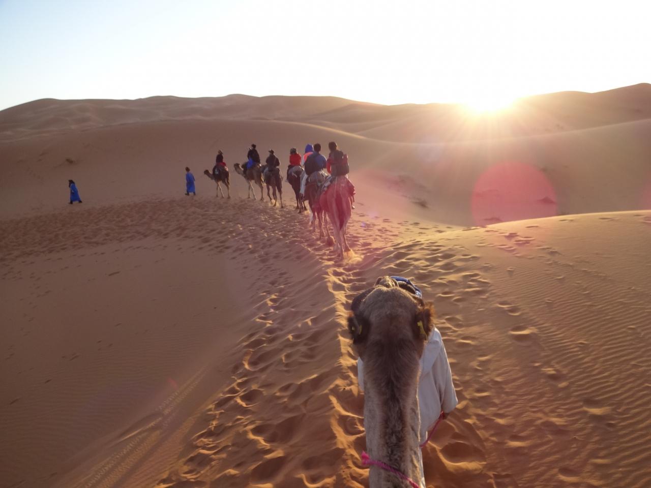年末年始モロッコ〜スペイン縦断の旅 4...