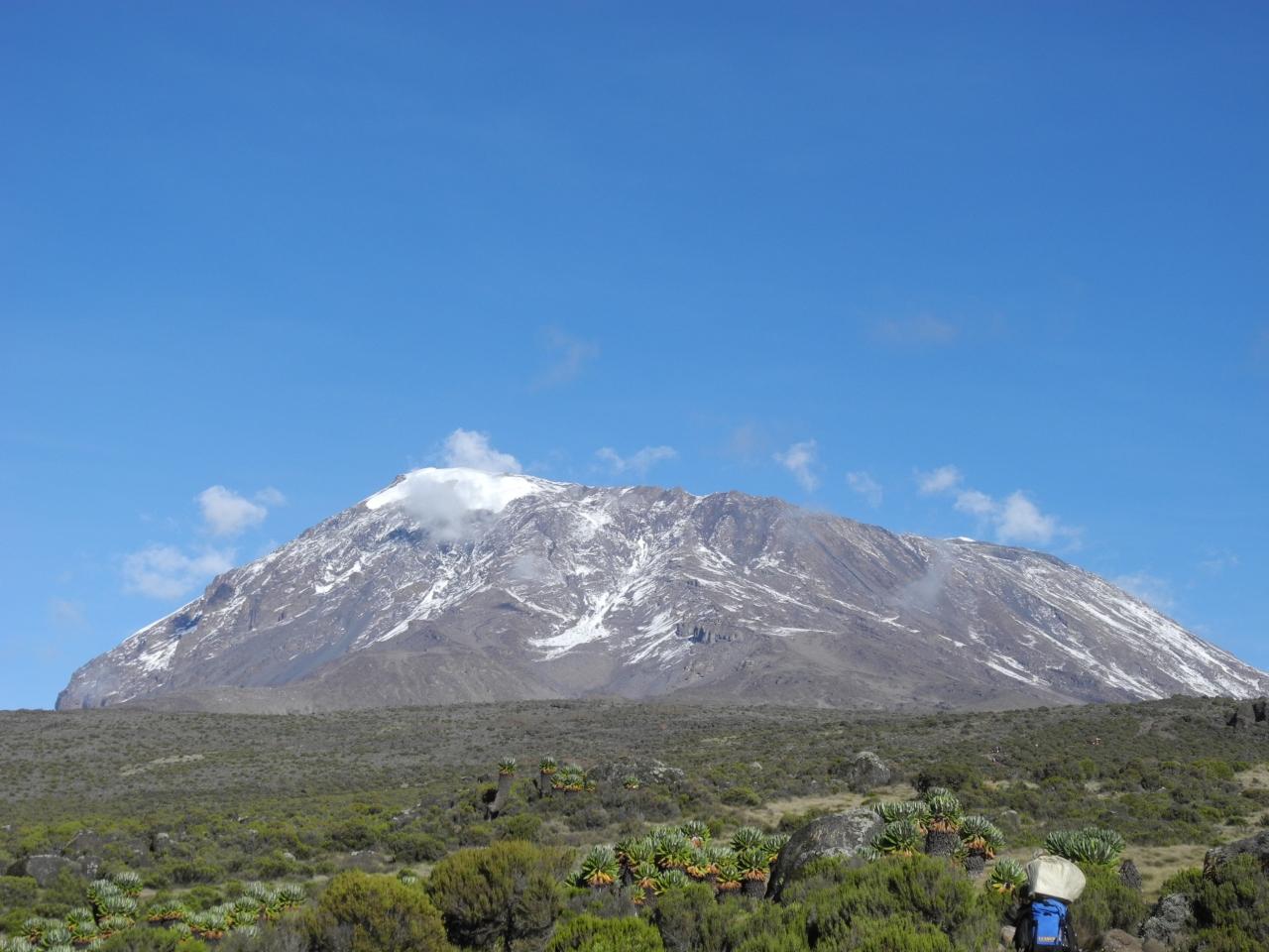 アフリカ最高峰登頂!