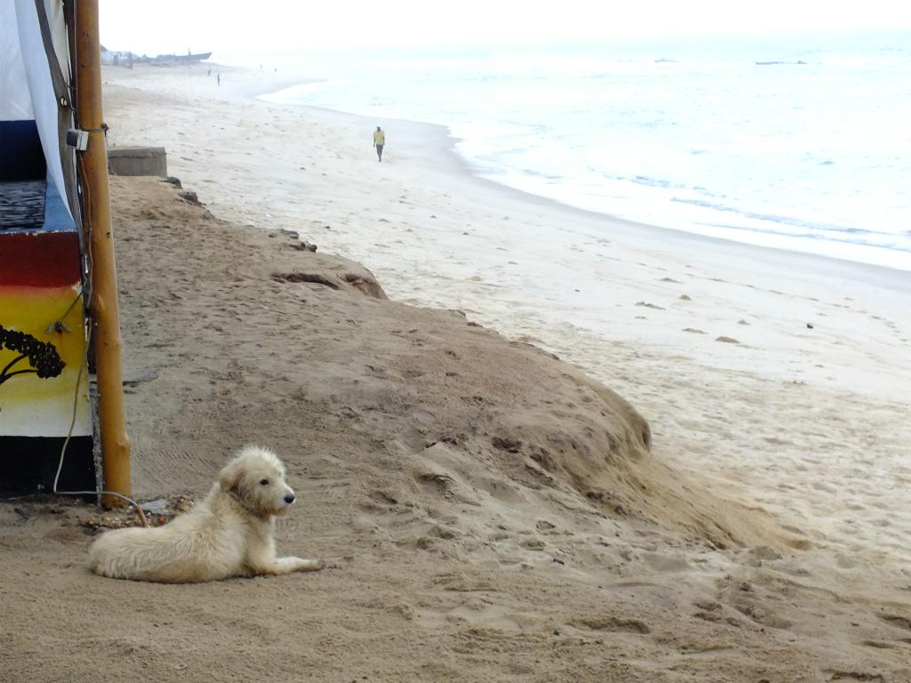 ロメの町の様子と海岸