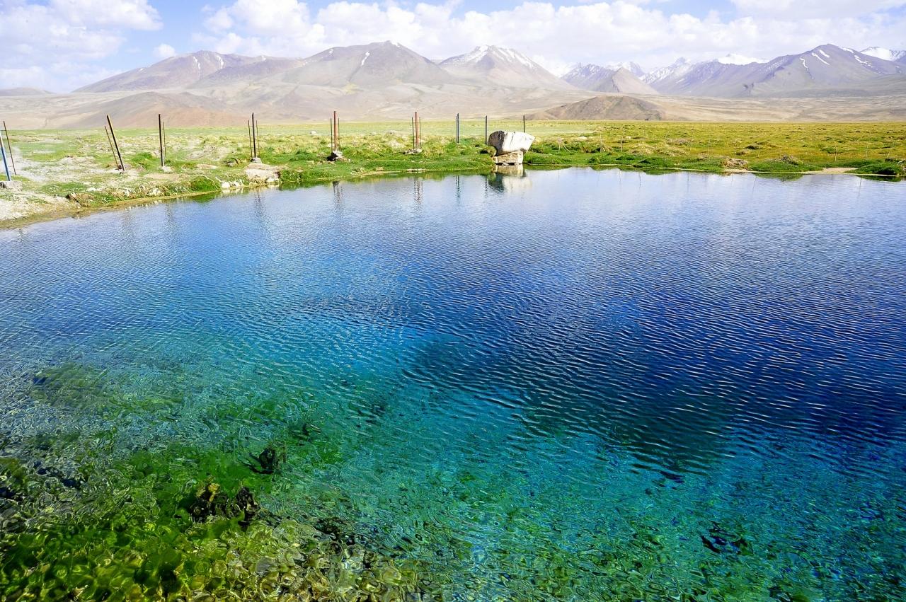 パミール高原縦断 山と花と人と 7ランガ...