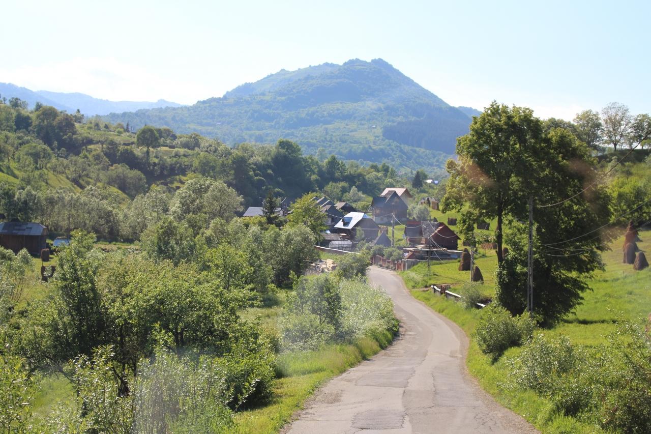 ROMANIA 8  ポイエニ村1 写真集「羊の地平線...