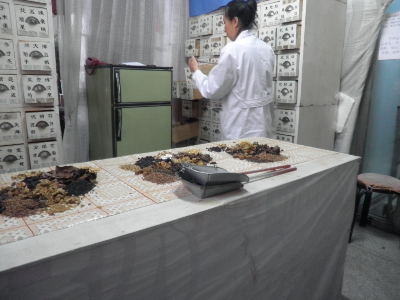 中国版新幹線(高鉄)の旅、漢方薬を購入。