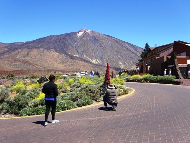 スペイン最高峰を臨むパラドールの庭で「...