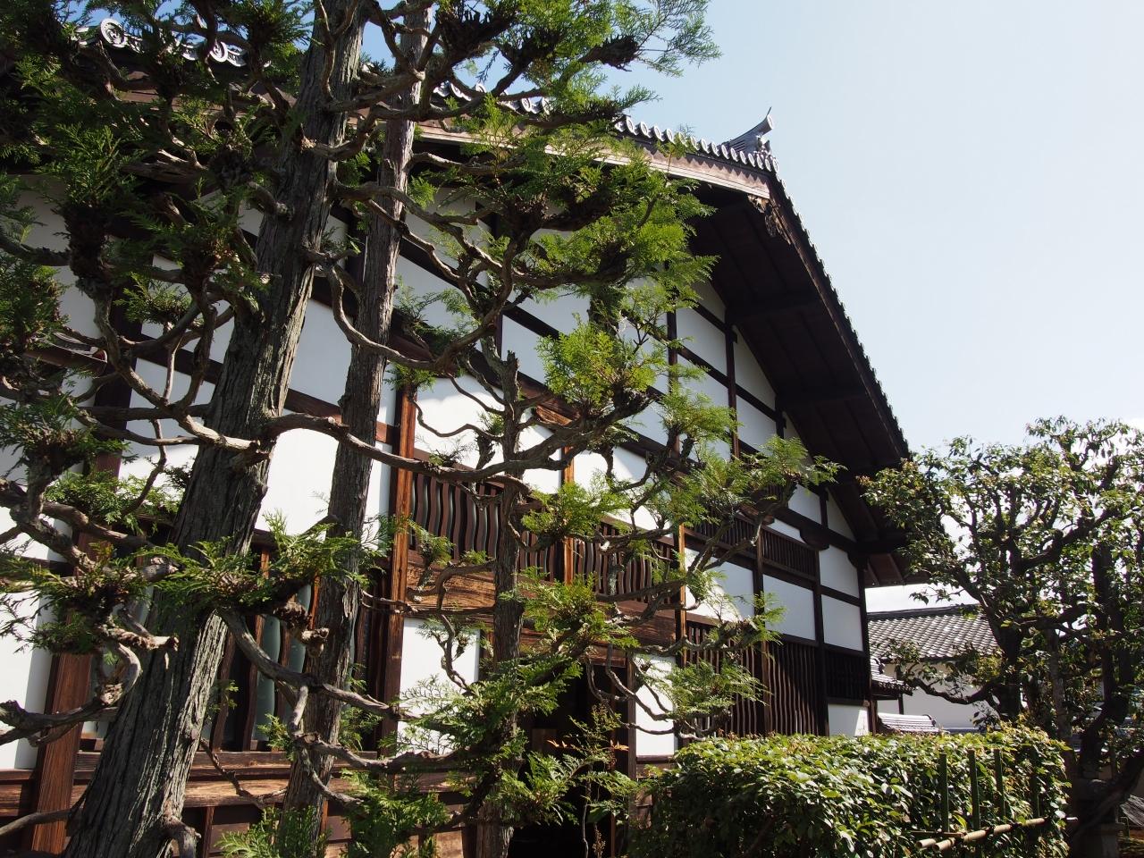 狩野松栄の画像 p1_8