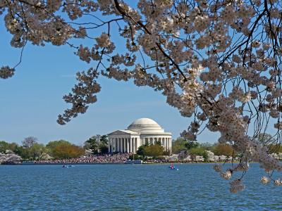 ワシントンD.C.の写真