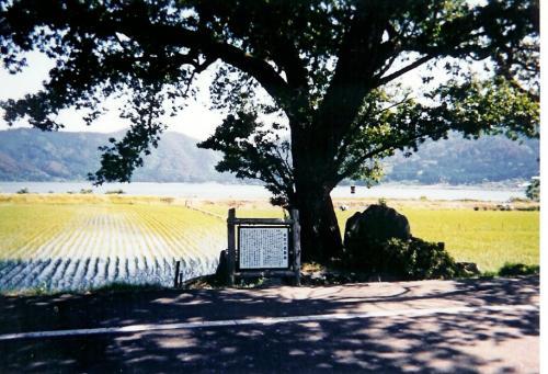 日本の旅 1994年の滋賀県周遊