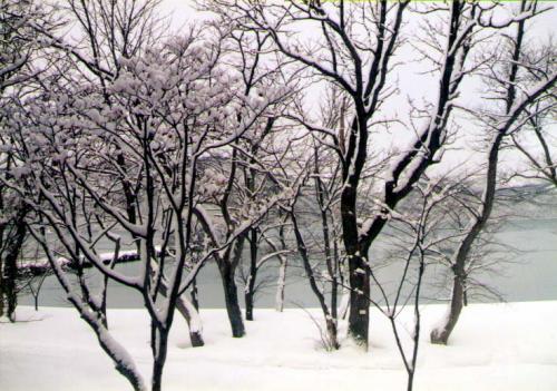 1995 「青森・十和田ミニ周遊券」の旅 【その1】十和田湖篇