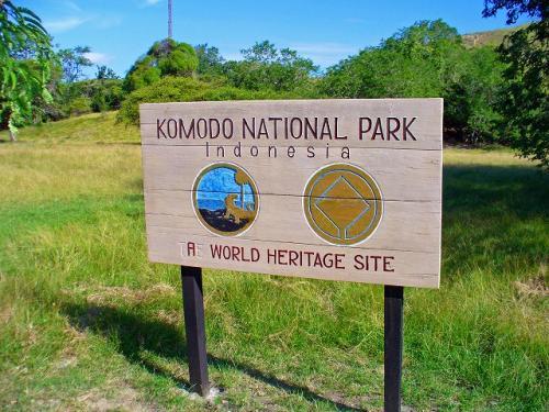コモド国立公園の画像 p1_13