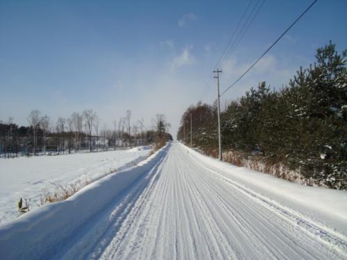 旭川ちょろちょろ'08冬