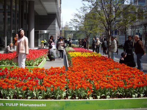 ちょこっと春散歩♪Marunouchi