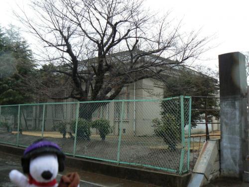 愛知近代建築めぐり(江南・犬山編)