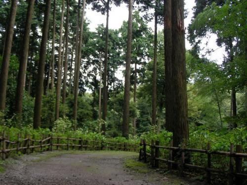 初めての家族旅行@箱根
