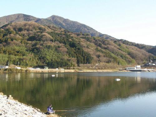 筑紫湖&薬王院でバードウォッチング [2009](1)