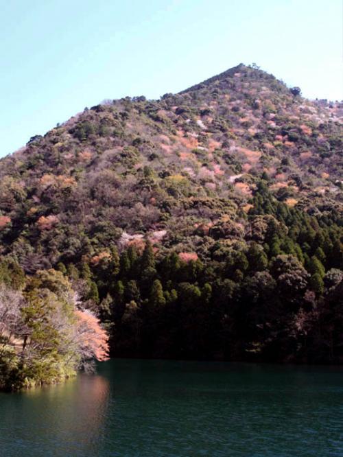 豊南の旅『食べて、遊んで、絶景を眺めて』