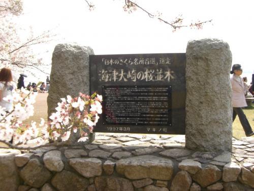 自転車の てるてる 自転車 今津 : 琵琶湖大橋を経て、ひたすら161 ...