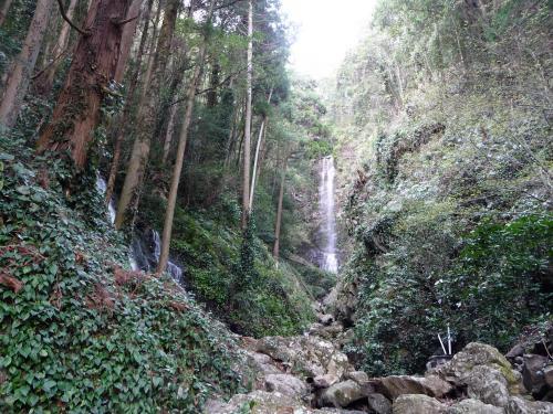 二つの滝が同時に見える!『白藤の滝&観音滝』◆静岡の滝紀行【その7・最終章】