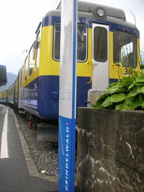 スイス10日間の旅、7日目 建国記念のグリンデンワルドとユングフラウヨッホ