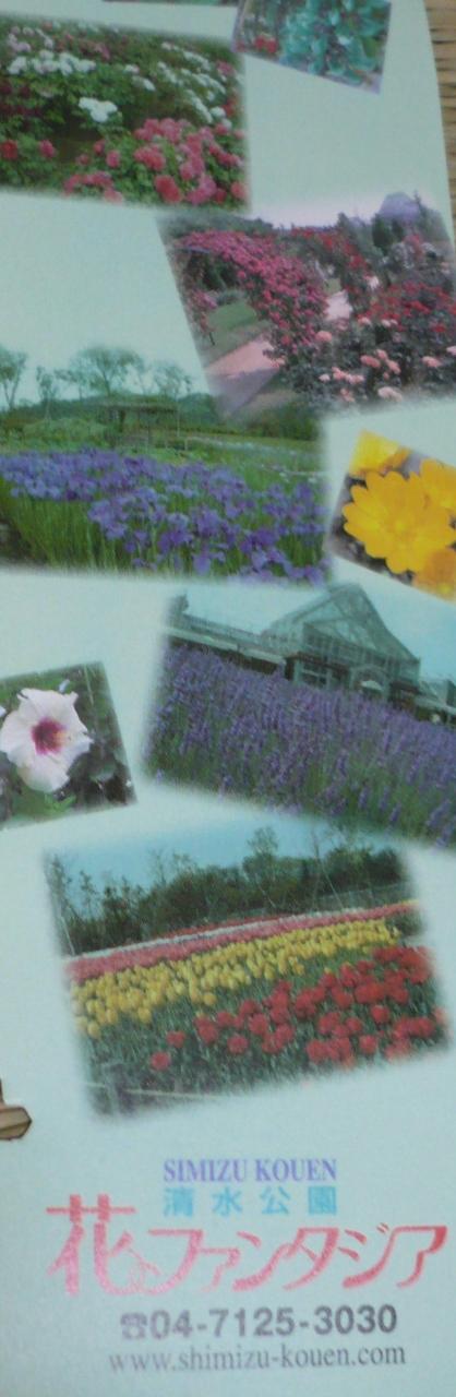 季節の花の揃い踏み、『花ファンタジア』