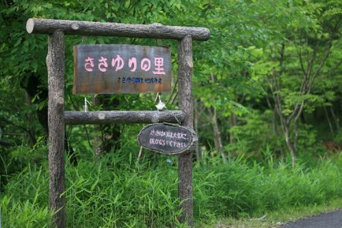 小さな旅●豊田市松嶺ささゆりの里-1・日本特産の可憐な笹百合