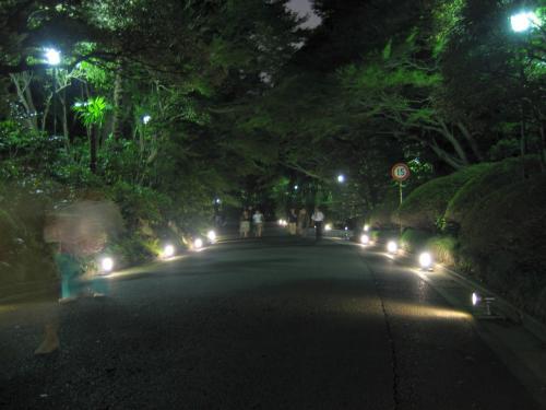 【蔵出し】 東京都庭園美術館・夜間公開 in 2006