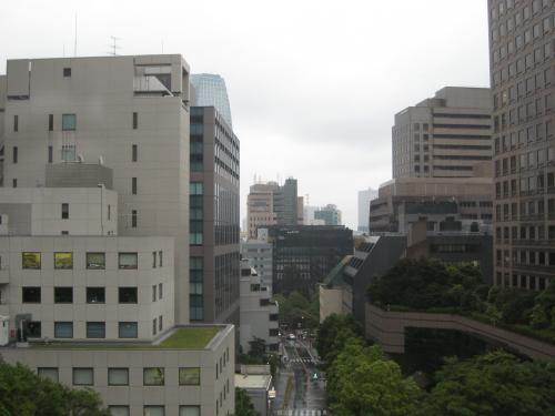 おのぼりさん気分で行く、花の都・東京