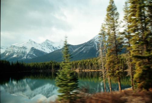 风景秀丽,浑然天成图片