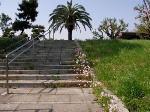 夢の島:第五福竜丸展示館と熱帯植物館(1)